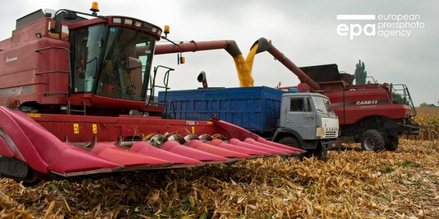 Україна експортувала зернових на рекордні $7,2 млрд за рік