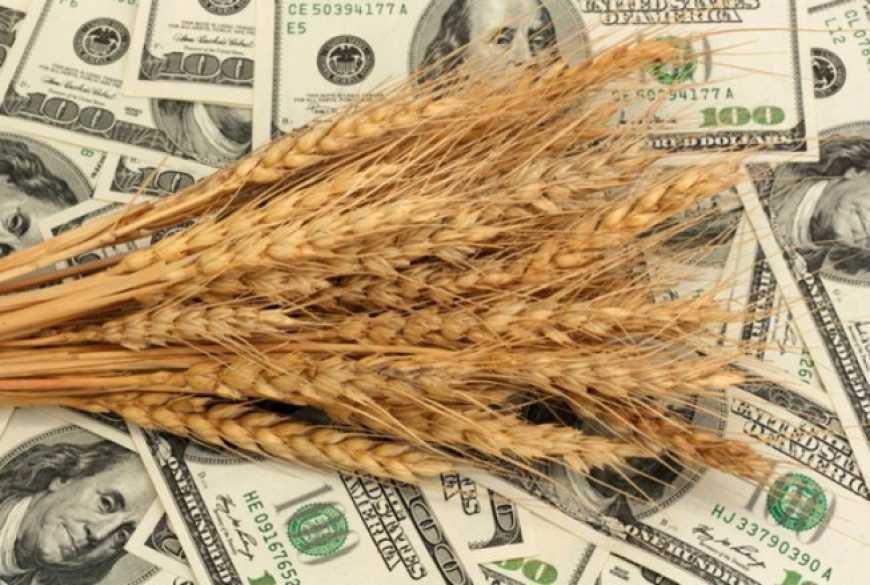 В цьому році Україна збирається побити рекорд по експорту зерна