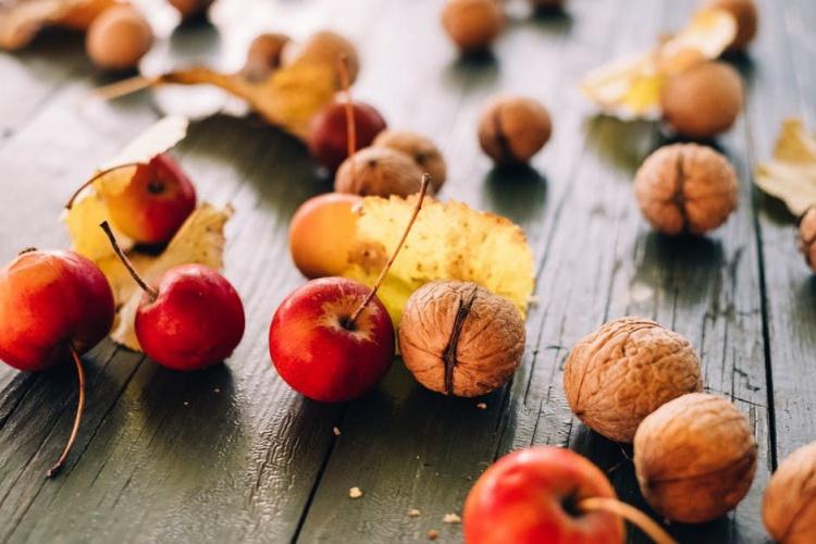 Україна побила рекорд з експорту фруктів і горіхів